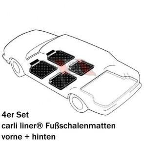 https://www.rensi.de/media/tmp/catalog/product/g/l/glasauto_4_vh_carli_500_pixel_mw.jpg
